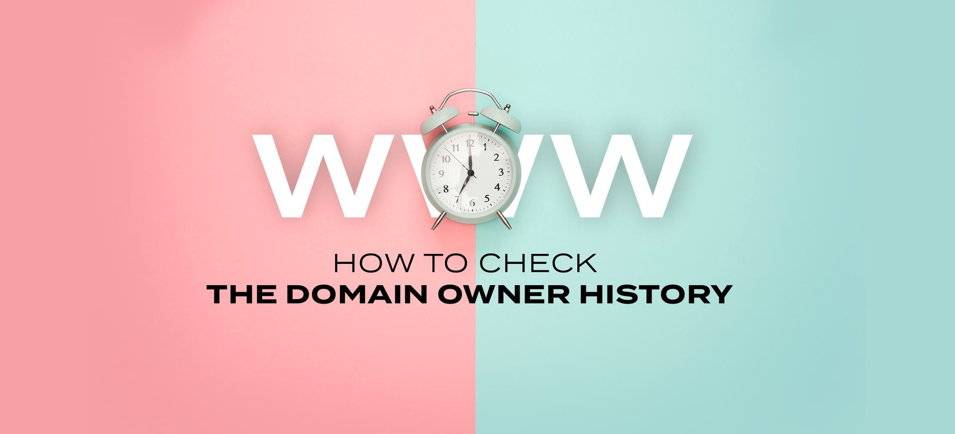 Whois History: How to Check the Domain Owner History.