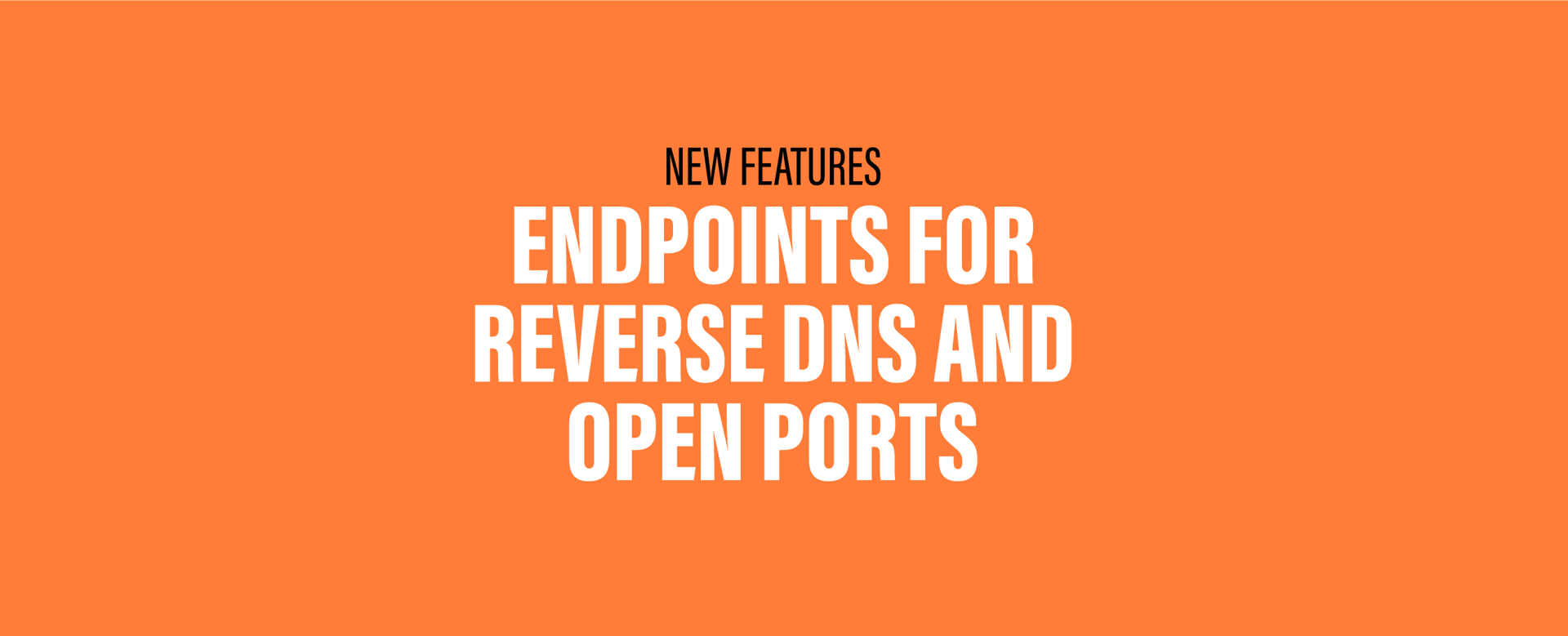 New Features: Endpoints for Reverse DNS and Open Ports