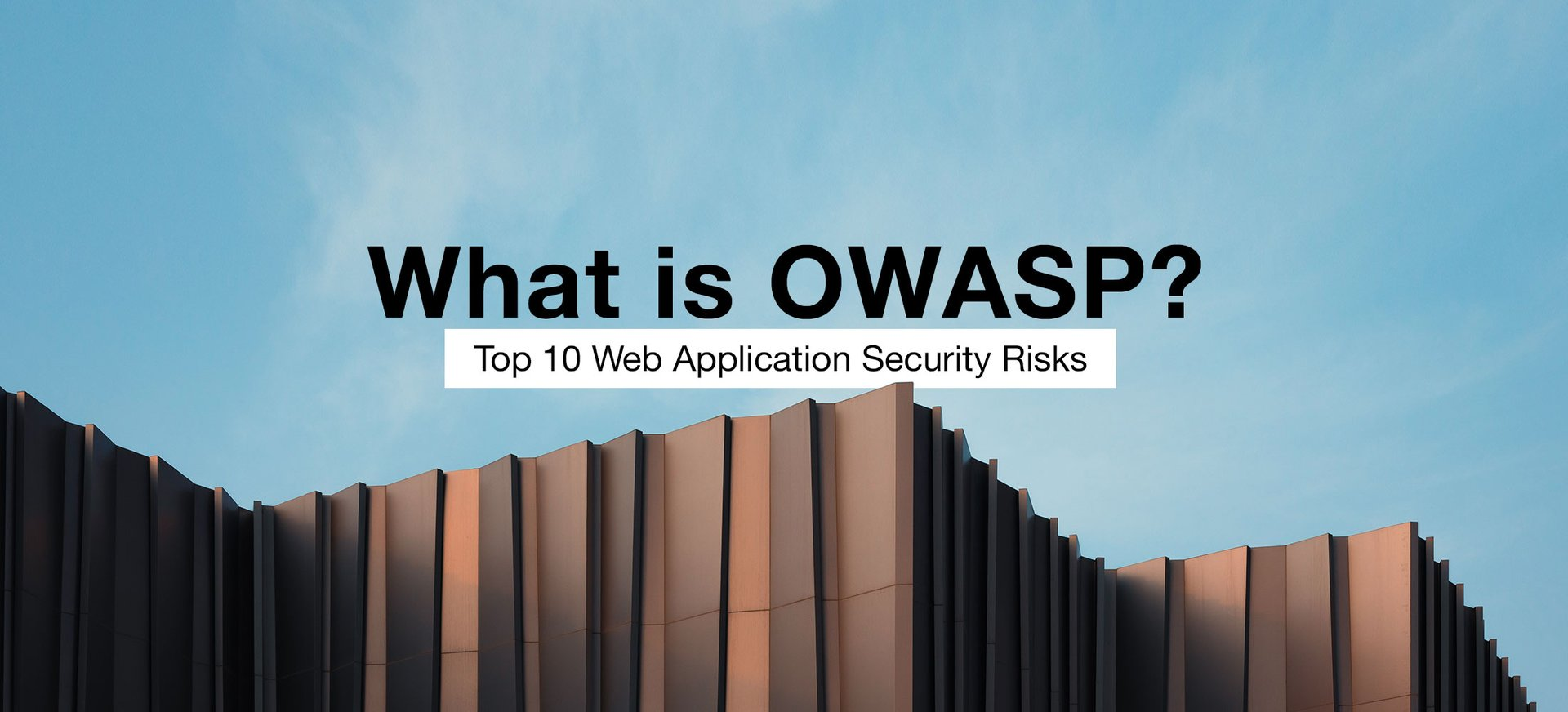 What is OWASP? Top 10 Web Application Security Risks.