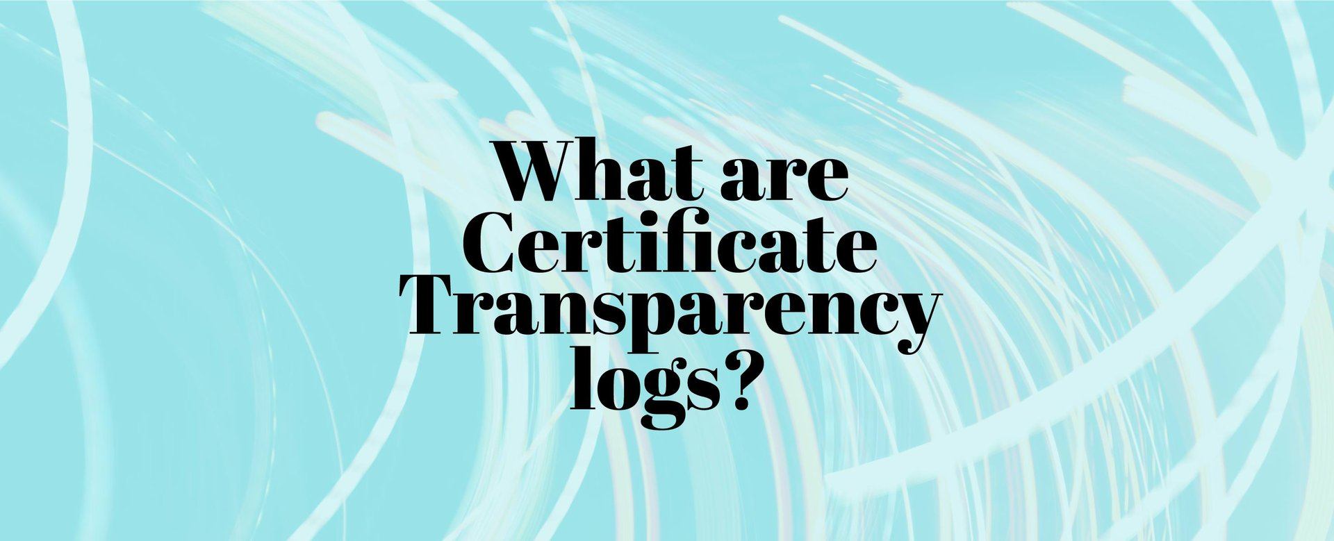 What Are Certificate Transparency Logs?