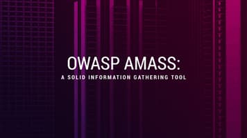 OWASP Amass: A Solid Information Gathering Tool
